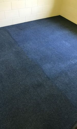 blue carpets cleaned